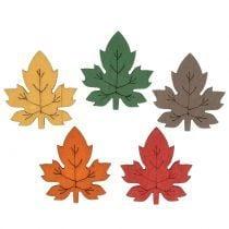 Fogliame, foglie e funghi