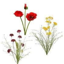 Fiori da giardino e fiori di campo