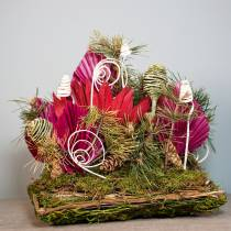 Cuscino per piante in rattan, muschio 20 cm x 20 cm H8 cm