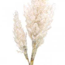 Pampa erba bianca crema artificiale erba secca decorazione 82 cm
