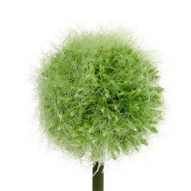 Allium Green L37,5cm 4 pezzi