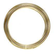 Filo di alluminio 2mm 100g oro