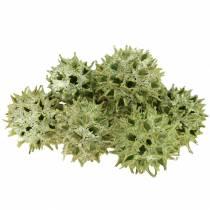 Coni di gomma dolce glassati verdi 250g