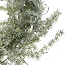 Ghirlanda di asparagi artificiali bianco, grigio Ghirlanda decorativa di asparagi Ø20cm