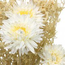 Mazzo artificiale di astri e gipsofila beige, bianco 43 cm