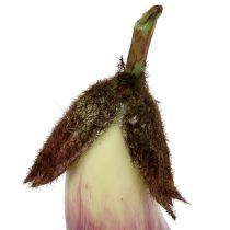 Melanzana 18,5 cm viola