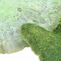 Spugna per alberi verde lavata bianca 1kg