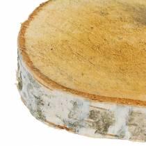 Fette di betulla tonde Ø11-13cm 12 pezzi