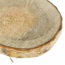 Fette di betulla tonde naturali 5cm 1kg per la decorazione con corteccia
