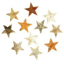 Birch stars Mini 300p