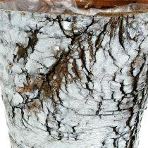 Vaso di betulla piccolo bianco Ø10cm H8.5cm