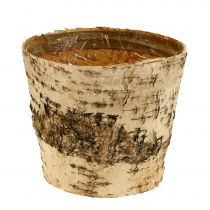 Vaso in betulla Ø15cm H13cm