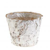 Vaso con betulla bianca Ø15cm H12.5cm