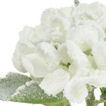 Ortensia bianco nevicato 33cm 4 pezzi