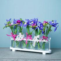 Vaso di fiori bottiglie da farmacista decorazione in vetro da farmacia su vassoio 38 cm