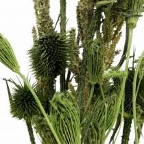 Mazzo di fiori di campo naturale, verde 25–60 cm 70 g
