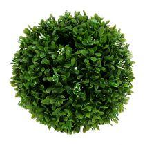 Palla di bosso Ø20cm verde