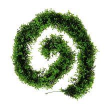Ghirlanda di bosso verde L170cm