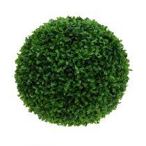 Palla di bosso verde Ø30cm