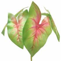 Caladio artificiale sei foglie verde / rosa