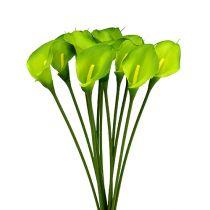 Calla verde artificiale 8cm L57cm 12 pezzi