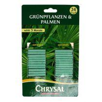 Fertilizzante Chrysal in stick piante verdi (24pz.)