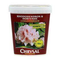 Fertilizzante Chrysal a lungo termine rododendro, ortensia 900g