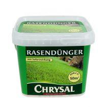 Fertilizzante Chrysal da 1 kg