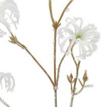 Ramo Clematide bianco floccato 62cm 3 pezzi