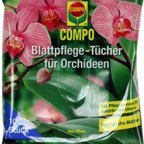 Salviette Compo per la cura delle foglie per orchidee 10 pezzi