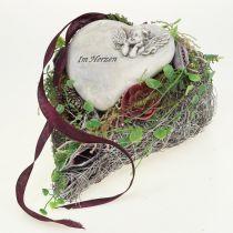 Pianta cuore di vite Bianco 27 cm x 17,5 cm 1 pz