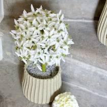 Fiore decorativo Allium, porro palla artificiale, cipolla ornamentale bianca Ø20cm L72cm