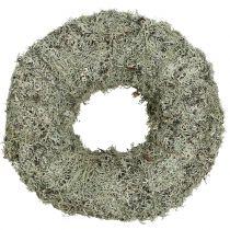 Ghirlanda decorativa ghirlanda di muschio grigio Ø38cm 1p