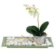 Vassoio decorativo verde 28 cm x 12 cm