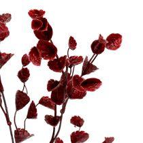 Deco ramo rosso scuro 74 cm 6 pezzi
