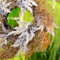 Ghirlanda decorativa pampa erba crema artificiale, ghirlanda porta marrone Ø60cm