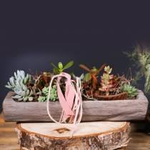 Ciotola decorativa in legno di paulownia 49 cm x 14 cm H7 cm