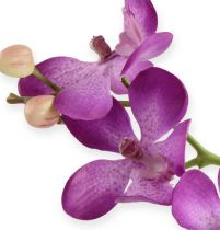 Orchidea Viola 38cm