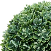 Palla Echeveria verde artificiale Ø18cm