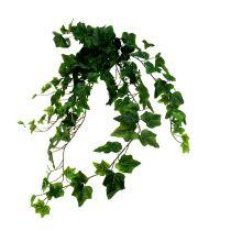 Appendiabiti edera verde artificiale L80cm