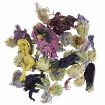 Set per la decorazione a secco artigianale Echter Eibisch Natur 300g pot-pourri di fiori