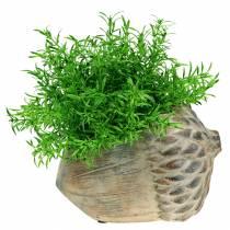 Ghianda in cemento per fioriera 21,5 cm × 14 cm H9,5 cm