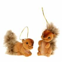 Decorazione autunnale Decorazione da appendere Squirrel Brown Set di 2