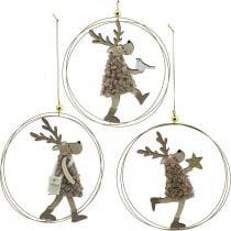 Renna da appendere, ciondolo di Natale, decorazione dell'Avvento in un anello Ø15cm, set di 3