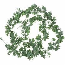 Ghirlanda di eucalipto verde 180 cm