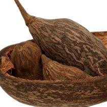Mix di frutta Baobab con guscio 300g