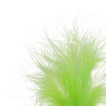 Piuma su bastoncino Verde chiaro L30cm verde chiaro 12 pezzi