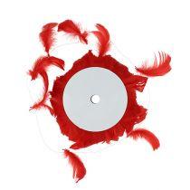 Piume su filo Rosso 10m
