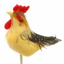 Gallo con vere piume sul bastone Arancio, giallo, marrone assortiti H5-6cm 12 pezzi