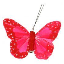 Farfalle con piume su clip multicolore 7cm 12 pezzi